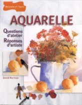 David NORMAN - Aquarelle, questions d'atelier, réponses d'artiste